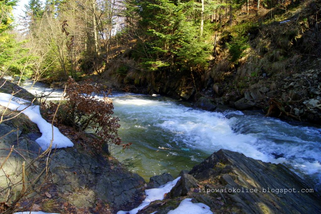 potok zimnik